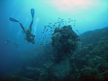 diving-great-barrier-reef.jpg
