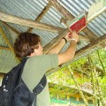 Coolest Places to Volunteer in Costa Rica