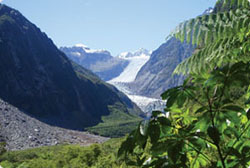 franz-josef-glacier2.jpg