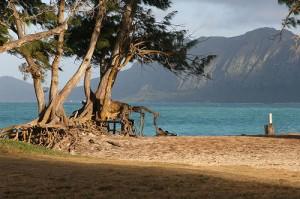 Bellows Beach, a military recreation facility on Oahu (courtesy Cadet X on Flickr CC)