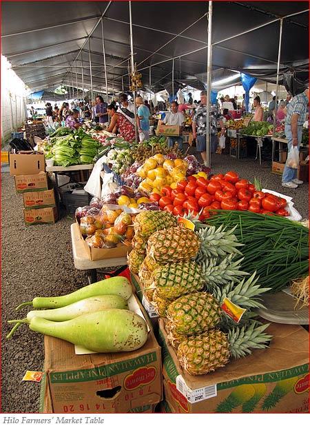 Non Profit Jobs Big Island Hawaii