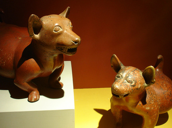 rsz_museo_regional_de_gdl_by_donarturo