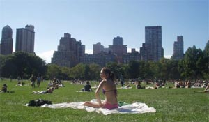 Central Park sunbather