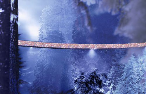 Canyon Lights, Capilano Suspension Bridge, North Vancouver, BC